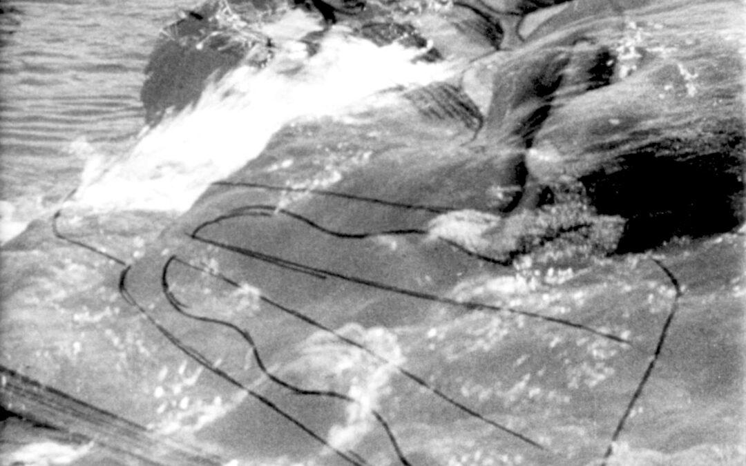 Les chemins du hasard. L'aléatoire et le variable dans l'art du XXe siècle, Marseille, 12 février 2020