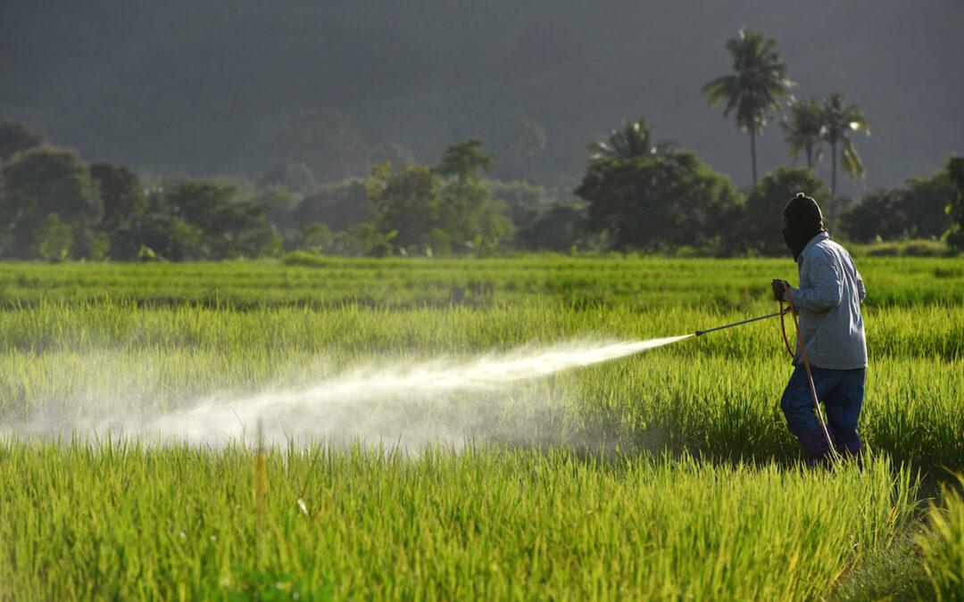 Pesticides et dioxines dans la péninsule indochinoise. Premier bilan du projet PAGOPI. 28 janvier 2021