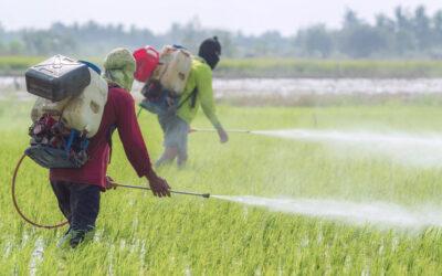 2es Journées d'étudeSHS/Pesticides, Paris, 11-12 mai 2021