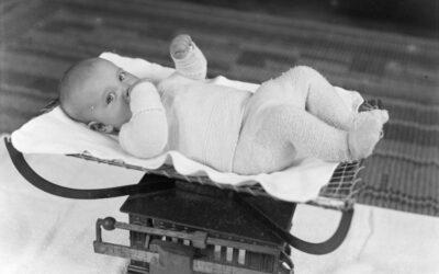 Rencontres. Bébé sapiens, nœud de crises ?, Cerisy-la-Salle, 21-27 septembre 2021